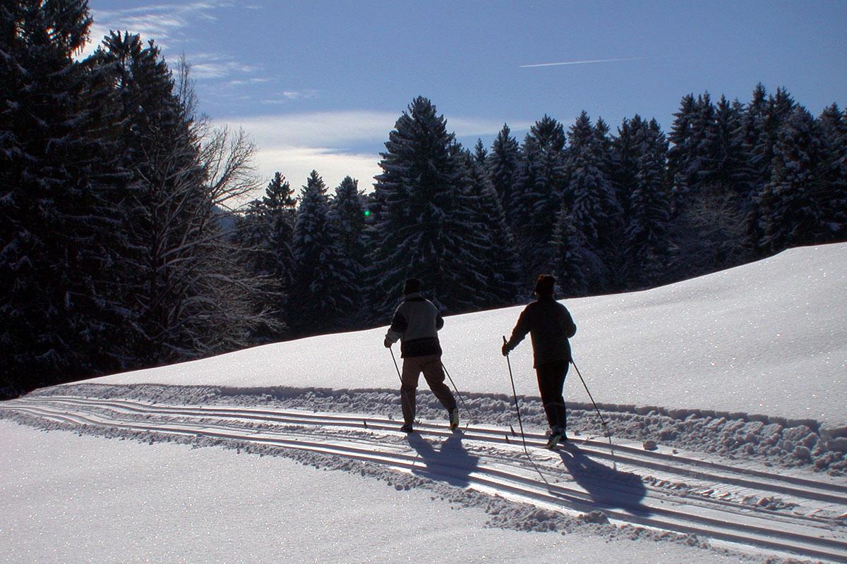 Skilanglauf am Samerberg